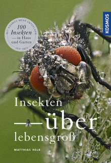 Buch_des_Monats_2017_03_Sachbuch